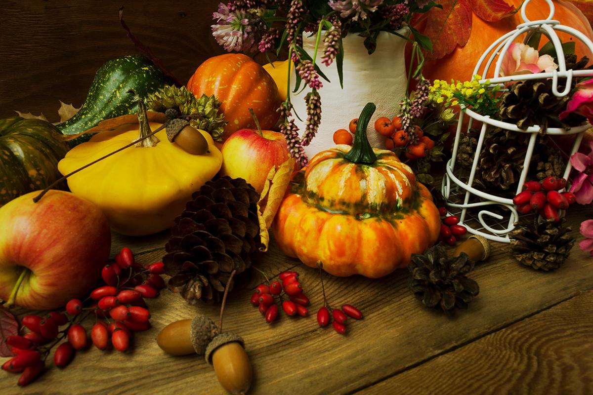 jesenski-plodovi-dekoracija-domnakvadrat