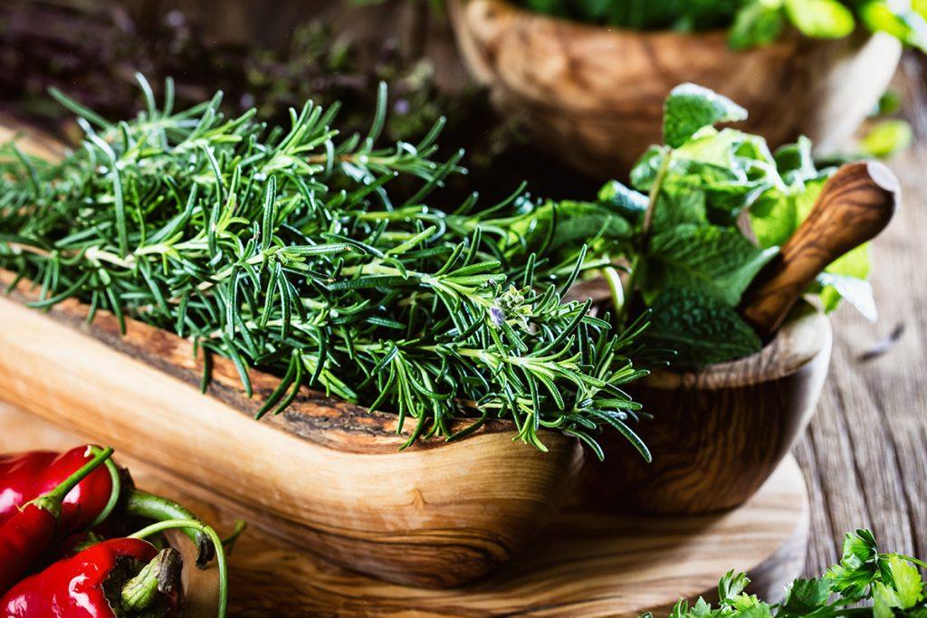 ružmarin-biljka-domnakvadrat
