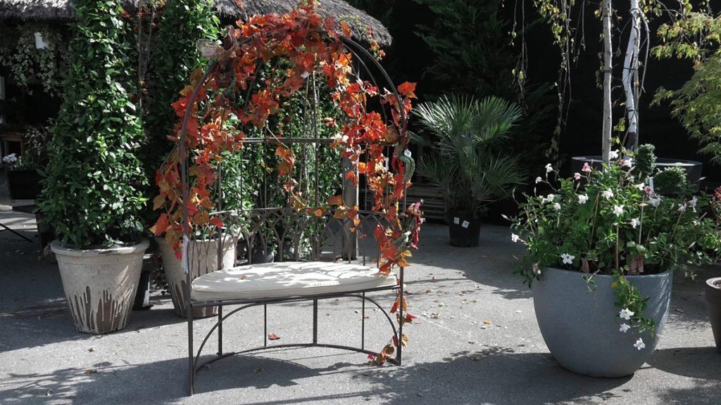 sjenica-lišće-jesen-iris-mbm-domnakvadrat