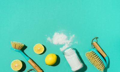 čišćenje-prirodna-sredstva-domnakvadrat