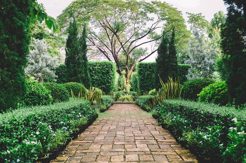 engleski-vrt-staza-drvo-domnakvadrat