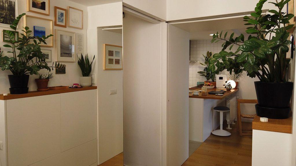 hodnik-biljke-stan-trešnjevka-domnakvadrat