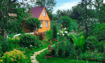 engleski-vrt-kućica-cvijeće-domnakvadrat