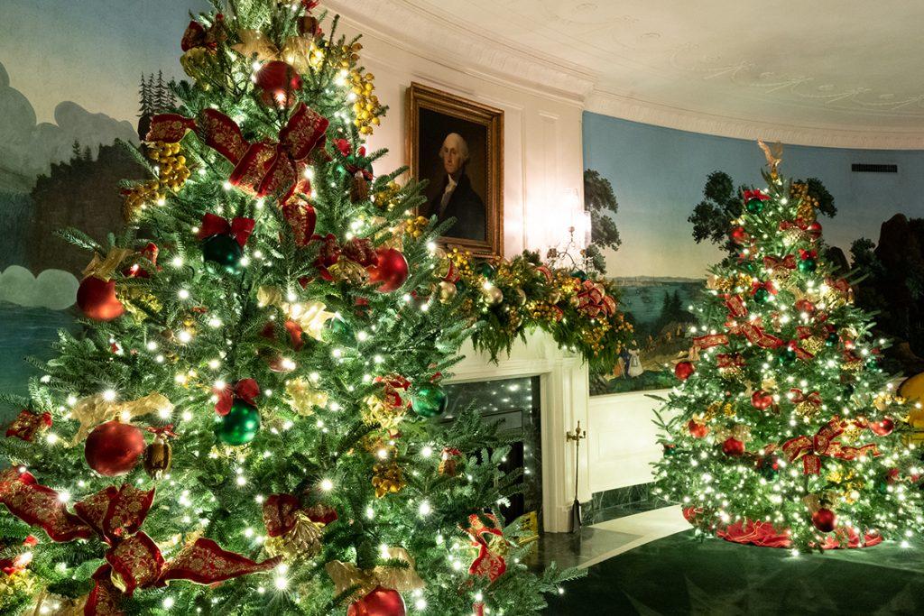 dva-božićna-drvca-sad-domnakvadrat