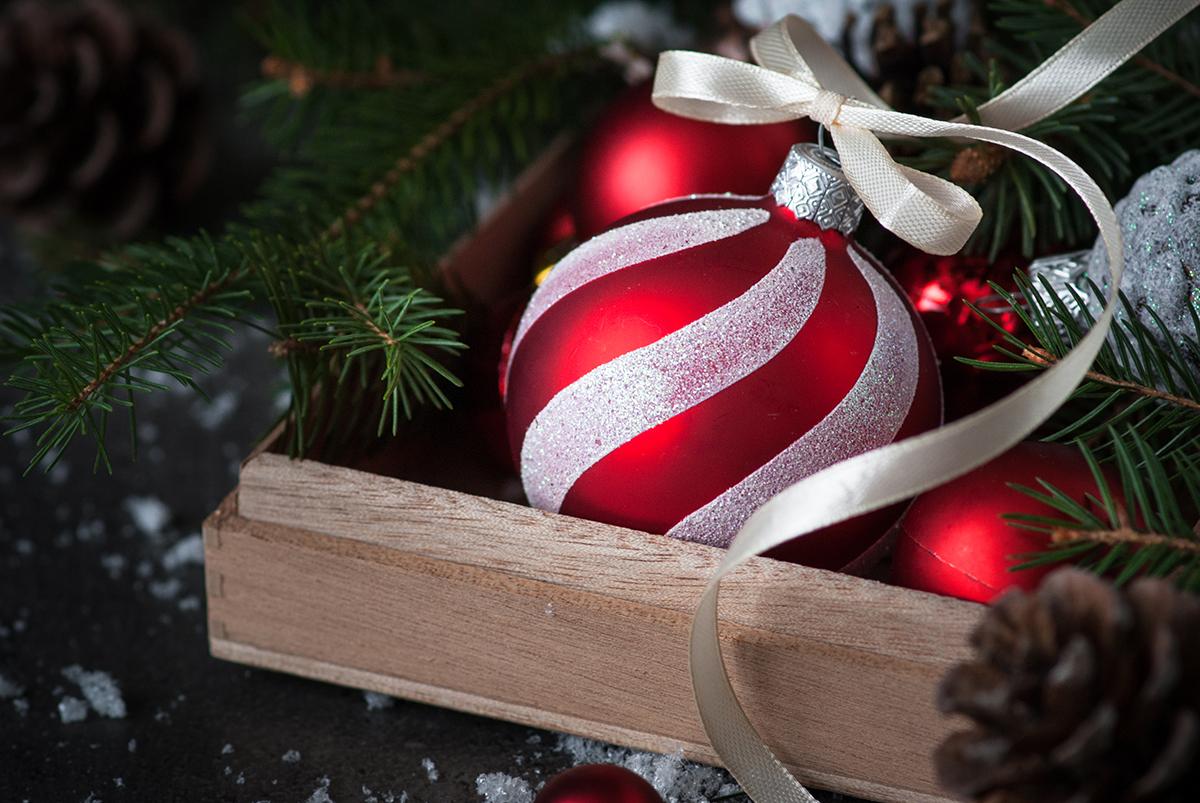 kuglica-grančica-božić-domnakvadrat