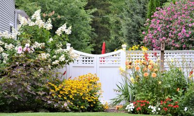 vrt-cvijeće-ograda-domnakvadrat