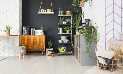 biljke-čistačice-domnakvadrat