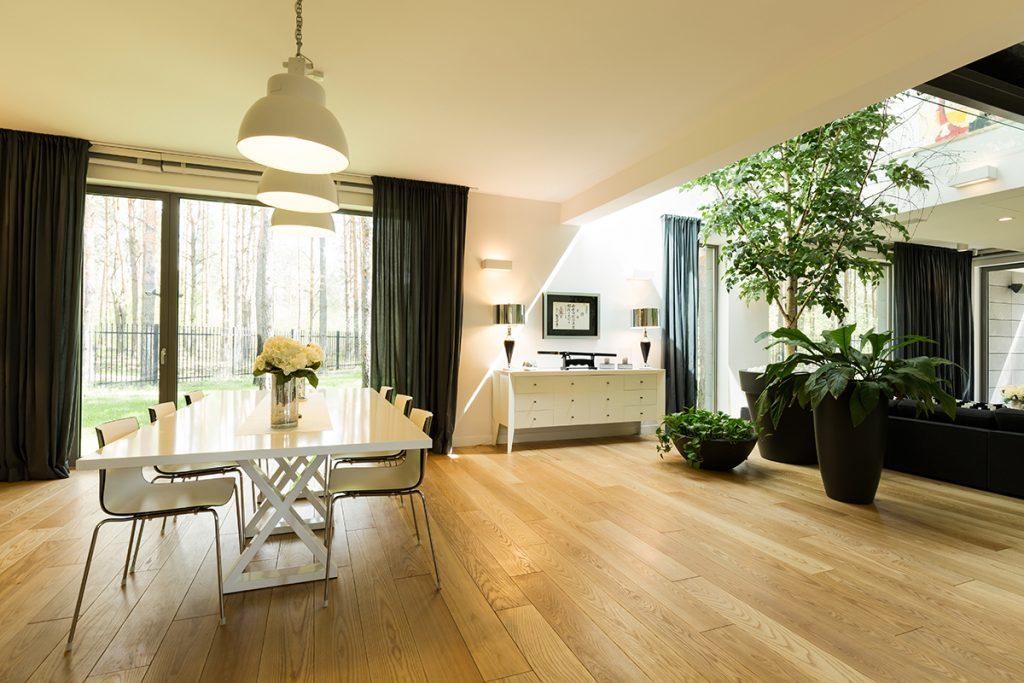 blagovaonica-luksuzna-biljke-domnakvadrat