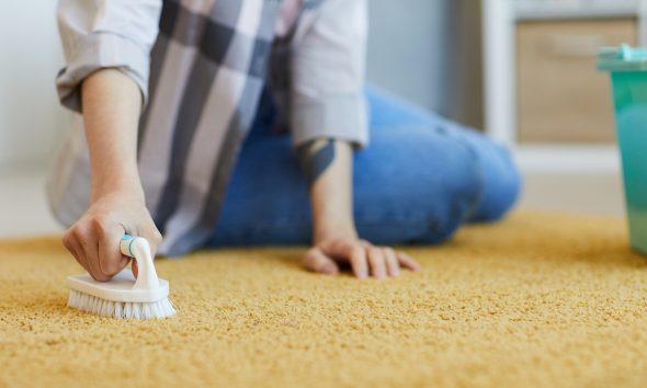 čišćenje-tepiha-domnakvadrat
