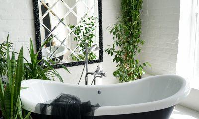 kupaonica-kada-biljke-domnakvadrat