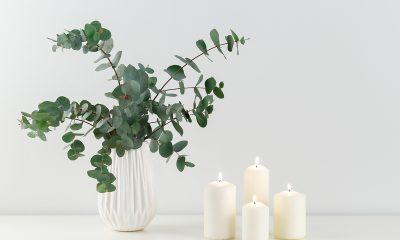 eukaliptus-dekoracija-domnakvadrat
