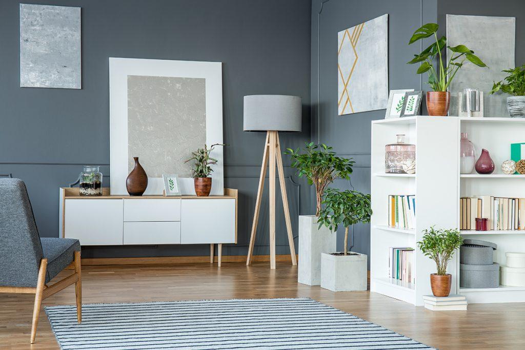 zelenilo-interijer-bonsaidrvce-domnakvadrat