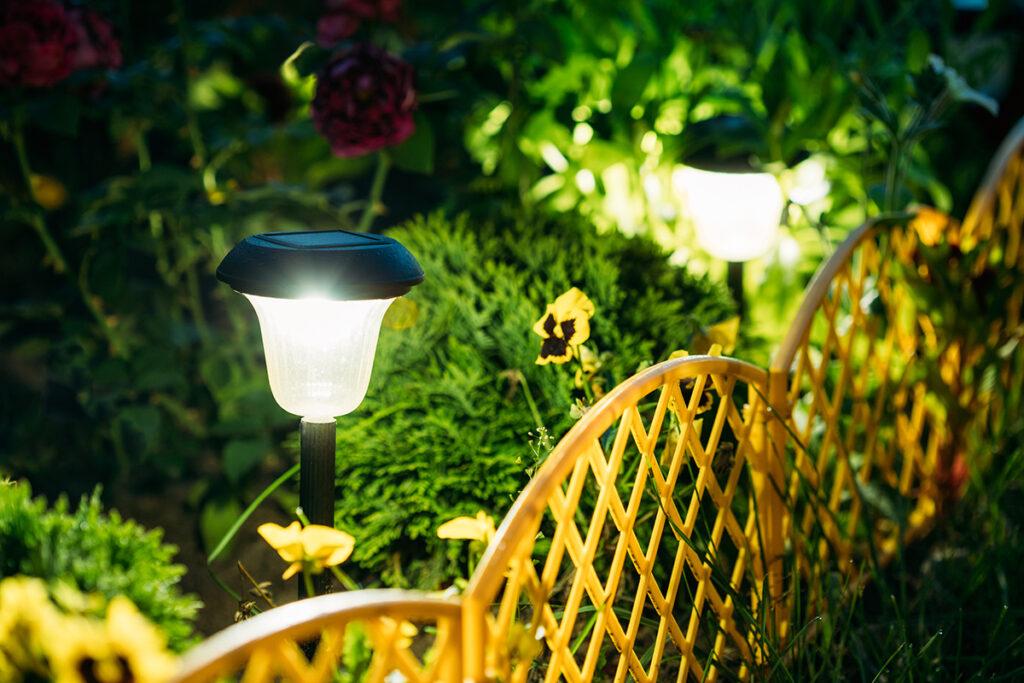 solarne-lampe-cvijeće-domnakvadrat