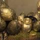 zlatne-pisanice-marija-zdilar-domnakvadrat