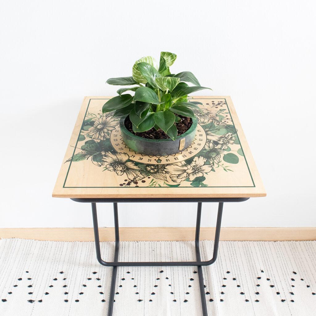 stolić-za-zalijevanje-biljka-domnakvadrat