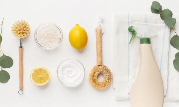 limun-sredstvo-za-čišćenje-domnakvadrat