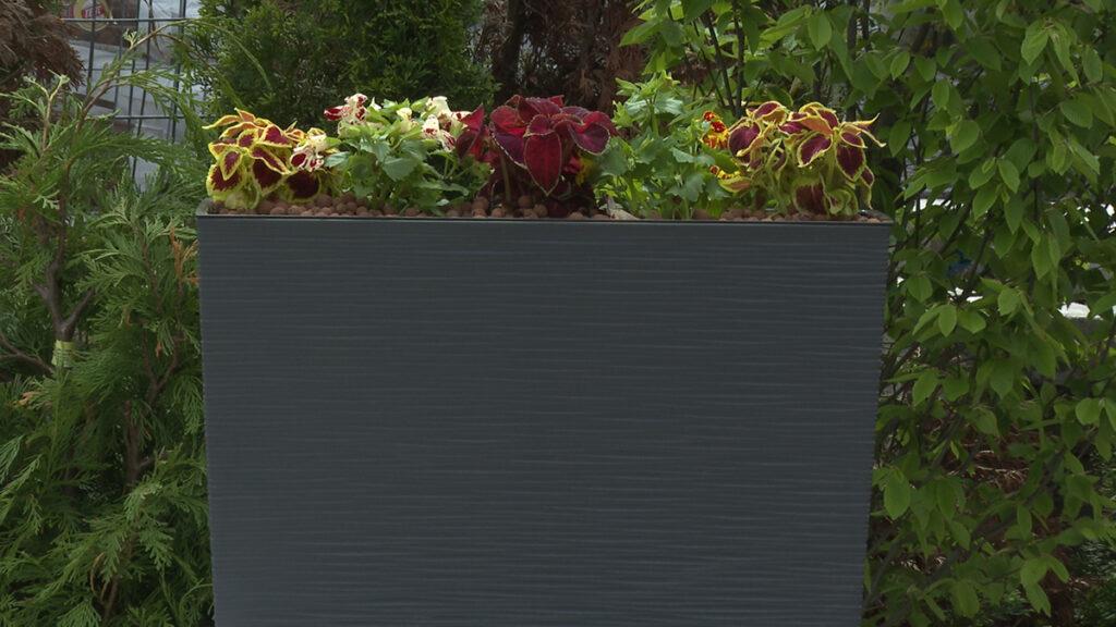 žardinjera-za-balkon-vrtni-centar-šestine-domnakvadrat