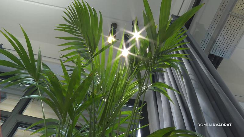 dizajnerska svjetla ukrasna