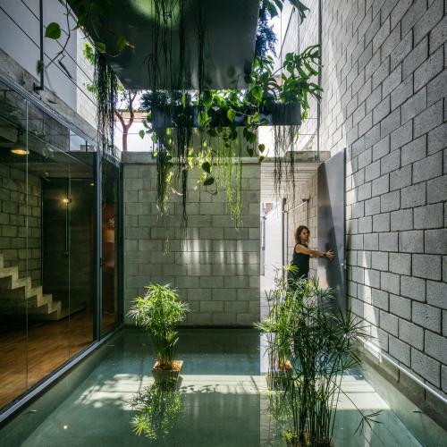 biljke-hodnik-interijer-brazil-domnakvadrat