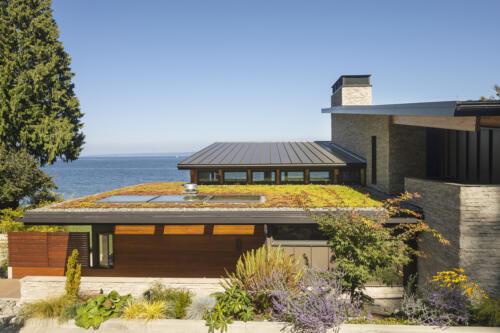 zeleni-krov-kuća-sad-domnakvadrat