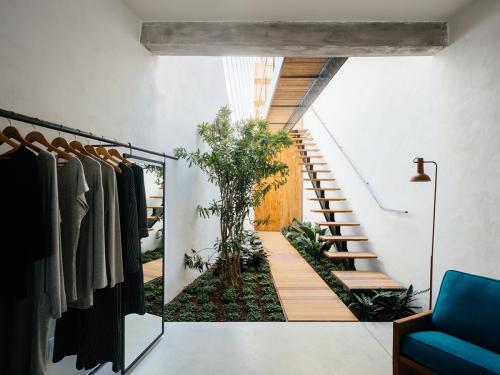 biljke-interijer-garderoba-brazil-domnakvadrat