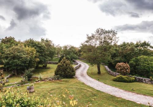 StancijaVigini-vila-istra-dvoriste-priroda-domnakvadrat
