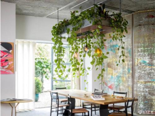 Kako kreativno ozeleniti interijer